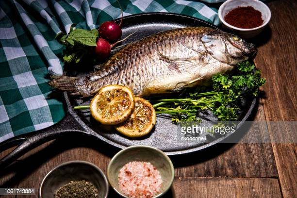 gourmet whole dorado fish on metal round skillet pan - dorado fish stock photos and pictures