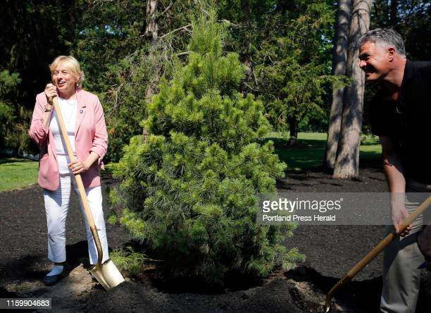 Gov Janet Mills and Portland Mayor Ethan Strimling finish ceremonial planting of the Tricentennial Pine Grove during a kickoff of Maine's...