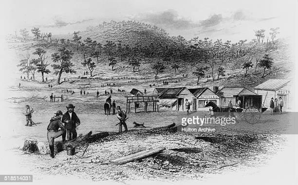 A government camp at Spring Hill near Creswick's Creek during the Australian gold rush Victoria Australia circa 1855