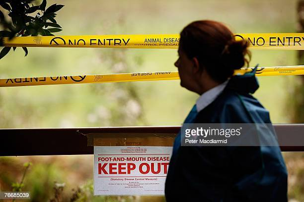 Government official stands near signs warning of an outbreak of Foot and Mouth disease at farmland on September 12, 2007 near Egham, England. This...