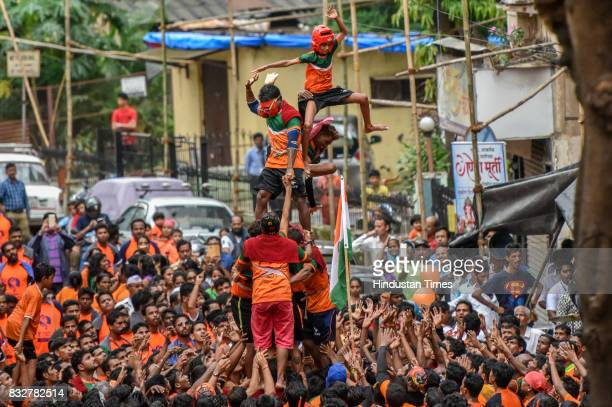 Govindas collapse as they try to form a human pyramid to break the 'Dahi Handi' an earthen pot filled with curd hanging above them as part of...