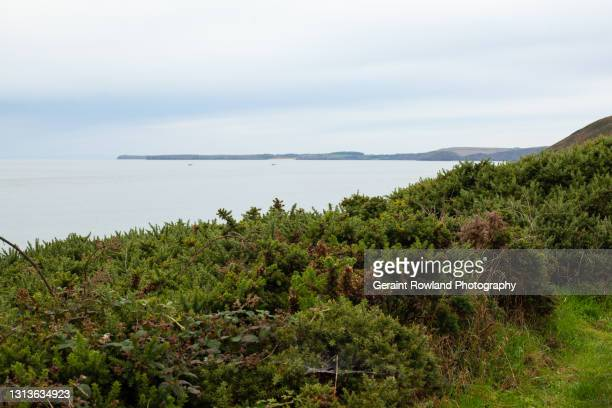 gower coastal views - geraint rowland stock pictures, royalty-free photos & images
