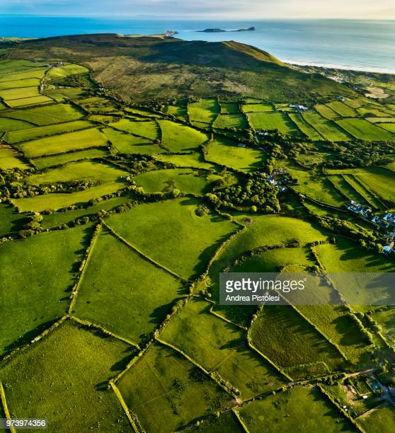 gower peninsula countryside, wales - welsh culture stock pictures, royalty-free photos & images