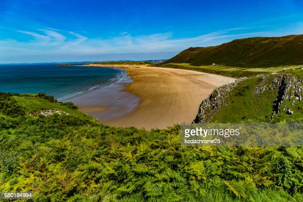 gower - gower peninsula stock photos and pictures