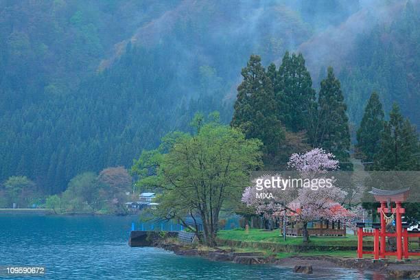 Gozanoishi, Senboku, Akita, Japan