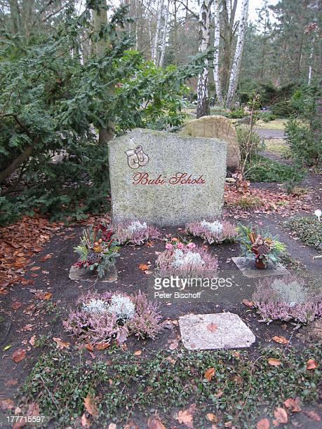 Grab von Gustav Bubi Scholz Grabstätte auf dem Waldfriedhof Zehlendorf Berlin Deutschland Europa Friedhof Grabstein Inschrift Grabstelle Grabschmuck...