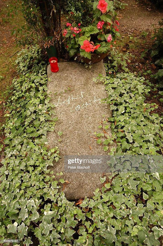 Grab von Siegfried Lowitz, alter Bogenhausener Friedhof, München ...