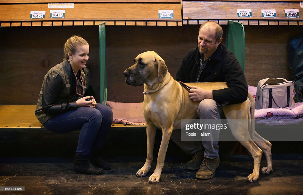 Grace and Steve Blake with their Great Dane named Summer during the final day at Crufts Dog Show on March 10, 2013 in Birmingham, England. During this year's four-day competition over 22,000 dogs and their owners will vie for a variety of accolades but ultimately seeking the coveted 'Best In Show'.