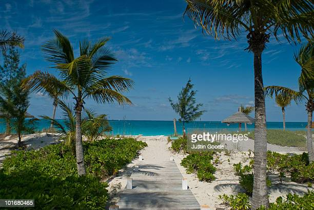 grace bay beach - grand bahama stock photos and pictures