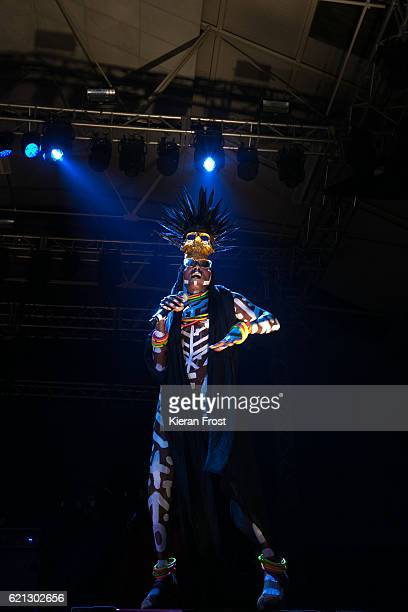 Grace Jones performs at Metropolis Festival at the RDS Concert Hall on November 5 2016 in Dublin Ireland
