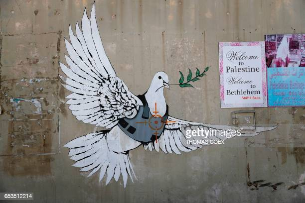 A graffiti by British street artist Banksy showing a dove with a bulletproof vest is seen in the Israeli occupied West Bank town of Bethlehem on...