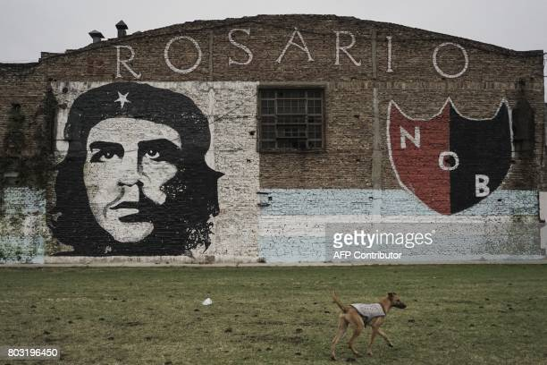 A graffiti depicting late Argentinian revolutionary legend Ernesto 'Che' Guevara's is pictured in Rosario on June 28 2017 Evasive with fame and known...