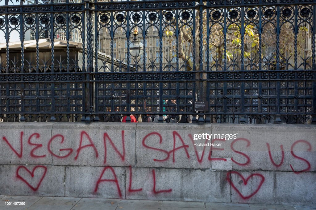 Vegan Graffiti Outside Parliament : News Photo