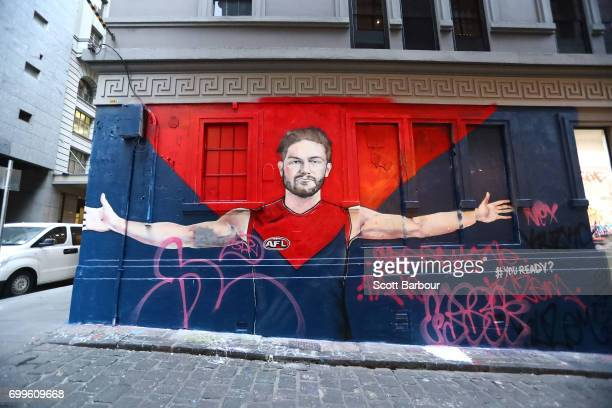 A graffiti mural of Tomas Bugg of the Demons is seen in Hosier Lane before a Melbourne Demons AFL training session at Gosch's Paddock on June 22 2017...