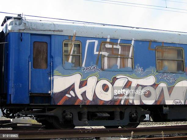 Graffitti in a wagon left in the station of train of Pinto 2003