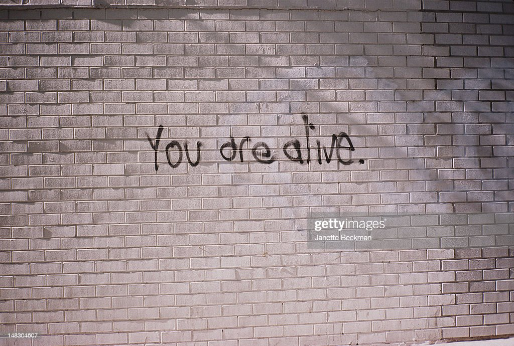 You Are Alive : News Photo
