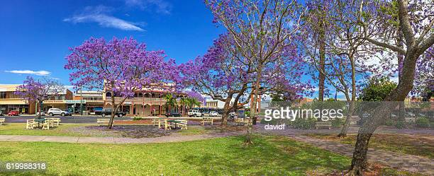 Grafton, NSW, Australia during Jacaranda Season in Spring
