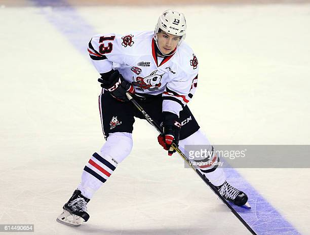 Graham Knott of the Niagara IceDogs skates during an OHL game against the Erie Otters at the Meridian Centre on October 6 2016 in St Catharines...