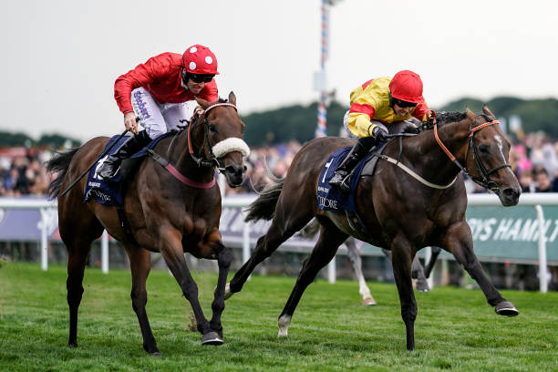 Image result for nunthrope stakes 2018