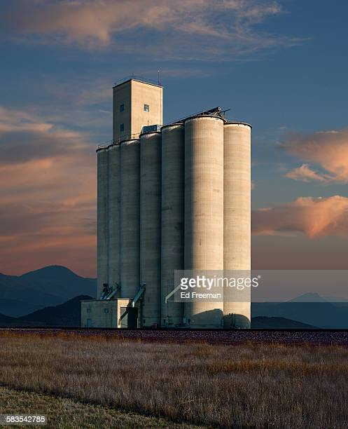 grain elevator in a small texas town - gulf coast states stock pictures, royalty-free photos & images