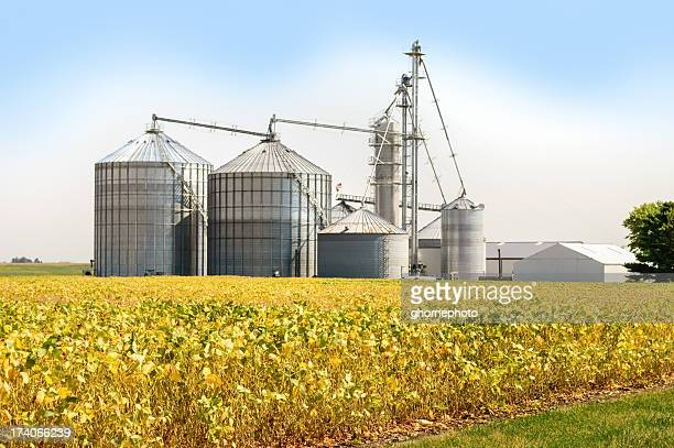 grain elevator - soybean stock pictures, royalty-free photos & images