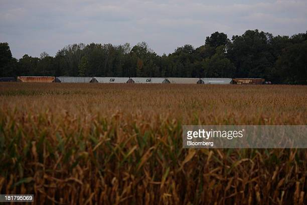 Grain railroad cars sit next to a cornfield in Jeffersonville Indiana US on Tuesday Sept 24 2013 Private exporters reported to the US Department of...