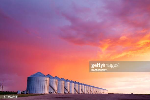 grain storage silos canadian prairie saskatchewan - traditionally canadian stock pictures, royalty-free photos & images