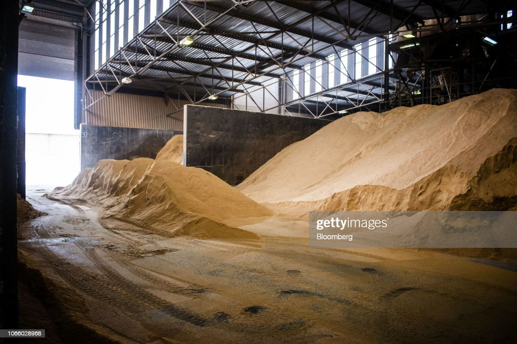 Grain to be used for cattle feed stands in a pile in a silo inside