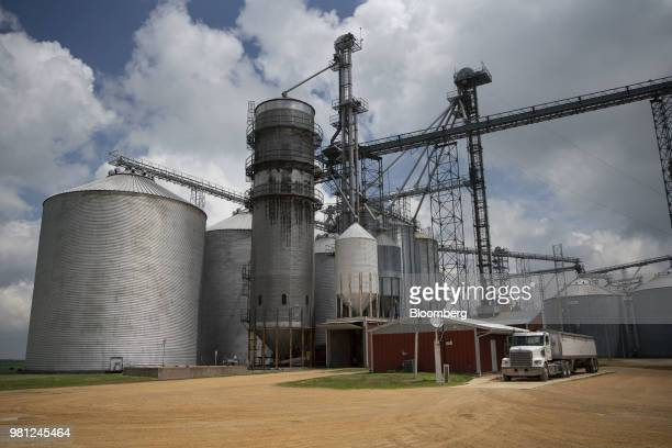 Standing water surrounds corn plants at the edge of a field near Tiskilwa Illinois US on Tuesday June 19 2018 A rout in commodities deepened as the...
