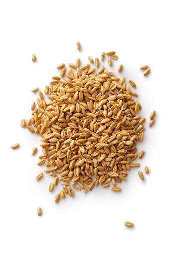 Grains: Spelt 494258449