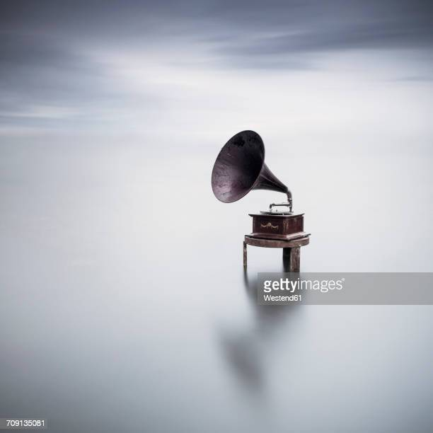 gramophone in a lake - gramophone stock pictures, royalty-free photos & images