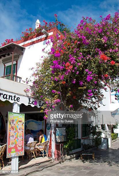 Gran Canaria Canary islands Spain Europe Mogan Puerto de Mogan flowers facade bougainvillea holidays tourism