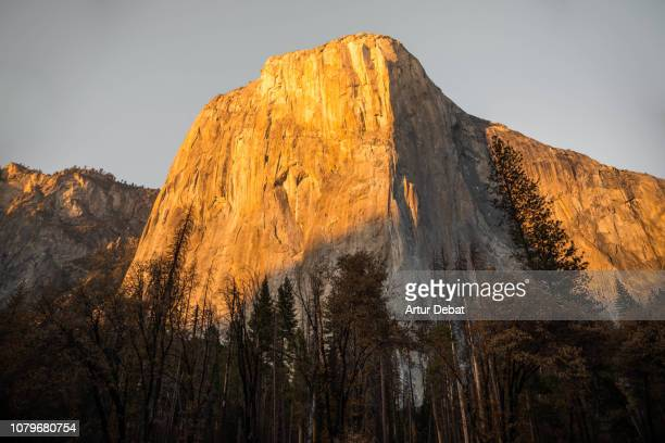 gran capitan wall in the yosemite valley during sunset. - granite stock pictures, royalty-free photos & images