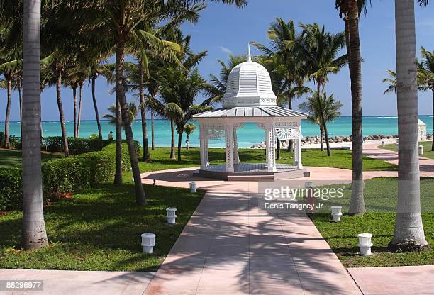 grand bahama island - freeport bahamas stock photos and pictures