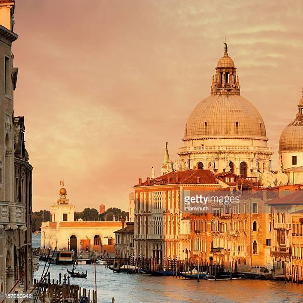 grand canal & santa maria della salute-kirche - vaporetto stock-fotos und bilder