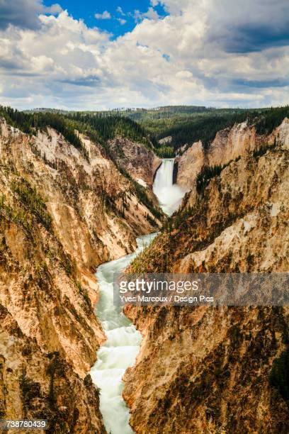 grand canyon and lower yellowstone falls, yellowstone national park - yellowstone river stock photos and pictures