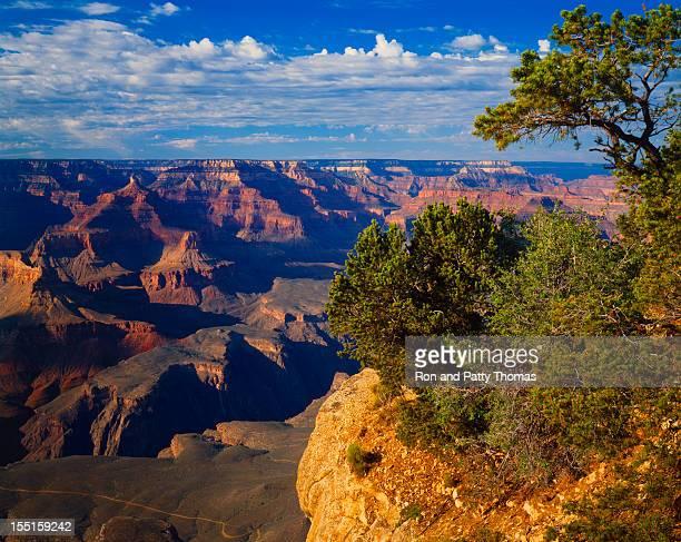 Grand Canyon National Park   (P)