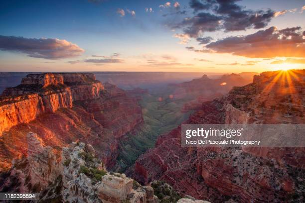 grand canyon - north rim - remote location stock pictures, royalty-free photos & images