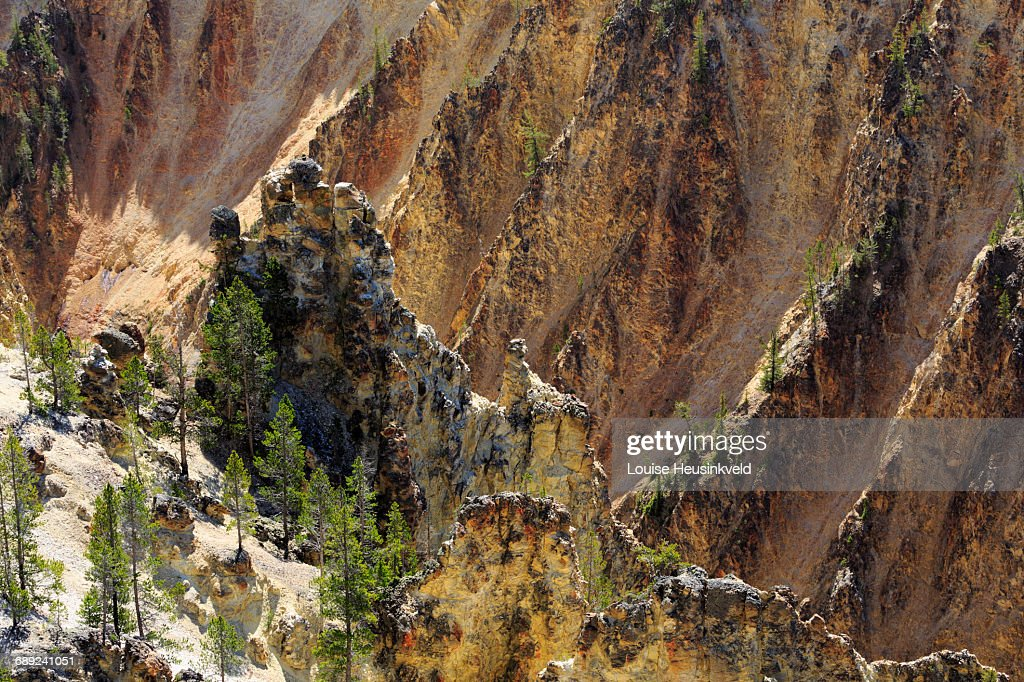 Grand Canyon of the Yellowstone : Stock Photo