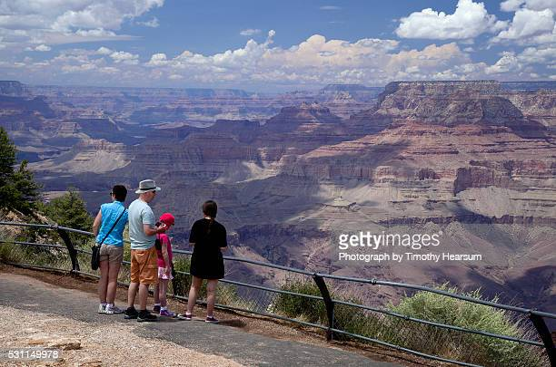 grand canyon overlook - timothy hearsum stock pictures, royalty-free photos & images