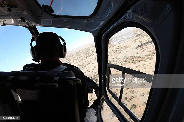 grand canyon - inside helicopter stock pictures, royalty-free photos & images