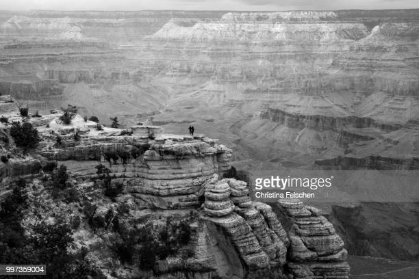 grand canyon - christina felschen stock photos and pictures