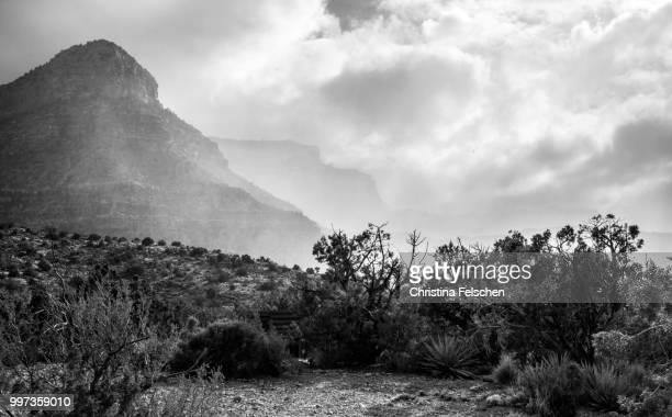 grand canyon - christina felschen - fotografias e filmes do acervo