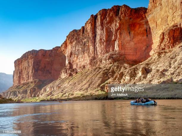 grand canyon rafting on the colorado river with reflections - colorado river stock pictures, royalty-free photos & images
