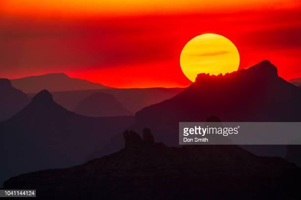 grand canyon sunset - don smith foto e immagini stock