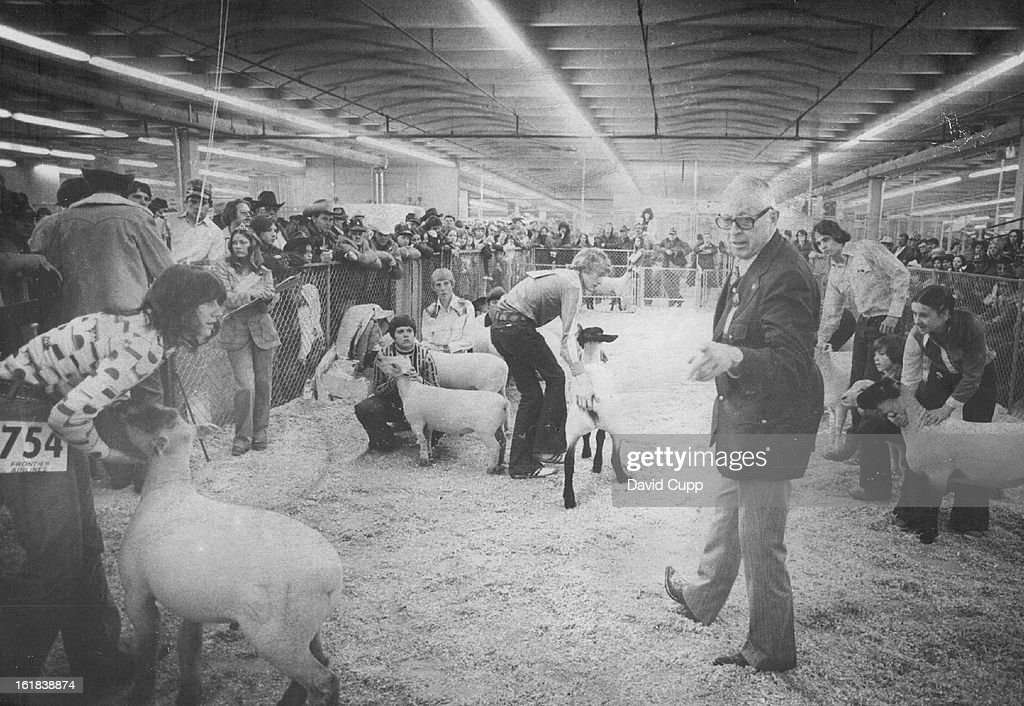 JAN 16 1977; Grand Champion; Judge Jim Davidson points, above, to the choice as grand champion wether in the Junior Show of the National Western Stock Show Saturday afternoon. The lamb appeared to decline the honor, left, as handler Lorie Bernhardt, 15, F : News Photo