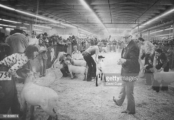 JAN 16 1977 Grand Champion Judge Jim Davidson points above to the choice as grand champion wether in the Junior Show of the National Western Stock...