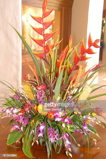 Grand HyattHotel Kauai Hawaiian Island Insel SüdPazifik PoipuBeach Orchidee Orchideen Pflanze Blüte Blumenstrauß Natur Reise TP DIGPNr 1335/2007