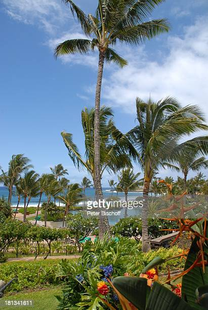 Grand Hyatt-Hotel, Kauai, Hawaiian Island, Insel, Süd-Pazifik, Poipu-Beach, Palme, Pool, Palmen, Meer, Ausblick, Wasser, Natur, Reise, TP, DIG;P-Nr.:...