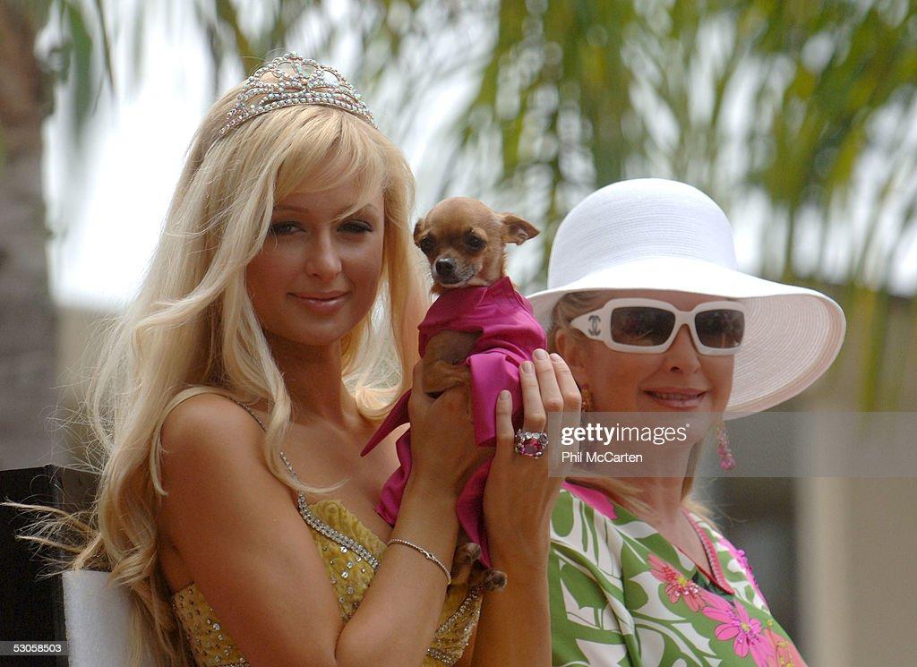 2005 LA Pride Parade : News Photo